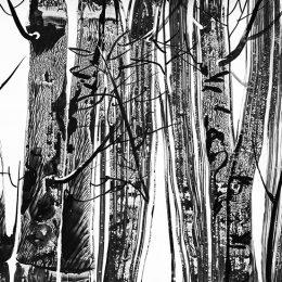 Poezia între aisthesis, imitatio, adevăr și autenticitate – o privire asupra operelor lui Hölderlin,  Rilke și Dante (I)