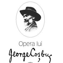 Revizitarea operei lui Coșbuc