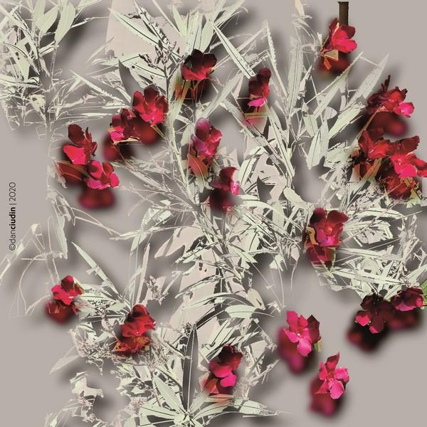 Dan Ciudin  – un artist polivalent