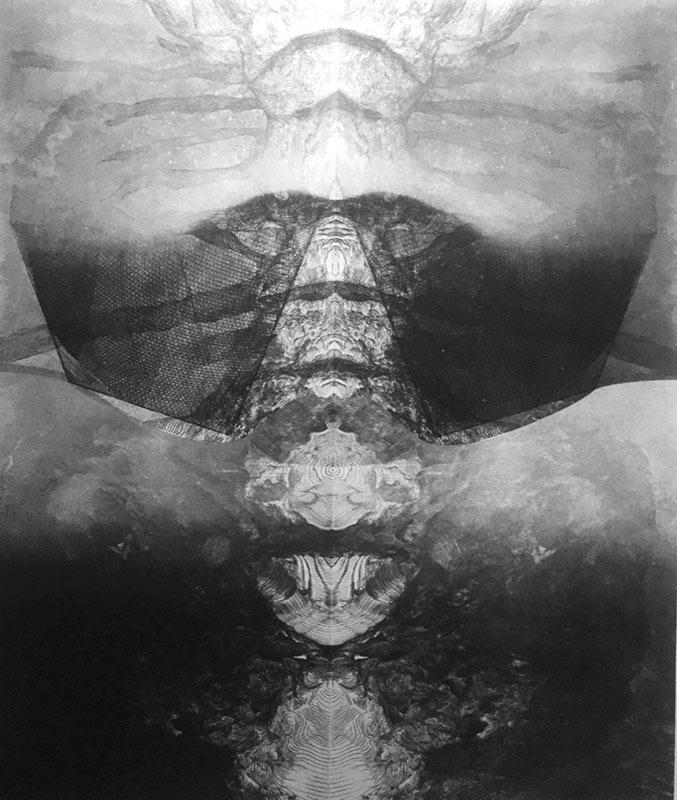 Marea invizibilă (III)