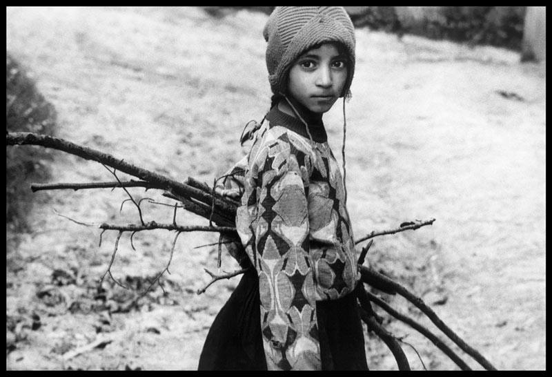 La aniversare: România și oamenii săi din lume