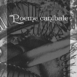 Poezia ca act de cunoaștere