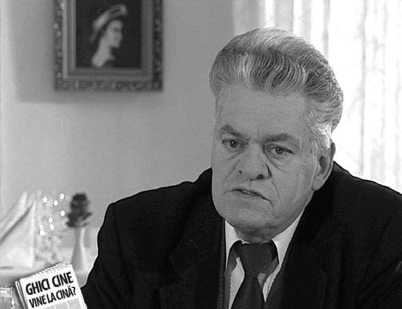 Un deceniu cât o viață (Mircea Radu Iacoban)